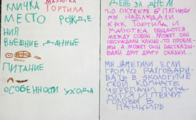 дневник наблюдения за ребенком в доу образец